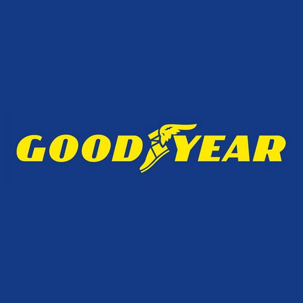 Neuer General Manager Schweiz bei Goodyear Dunlop
